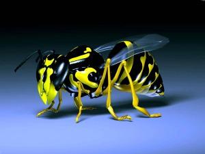 3d_Bumble_Bee